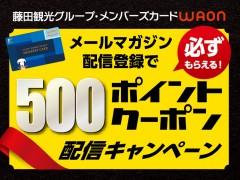 500ポイントクーポン配信キャンペーン